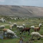 Zajímavá místa v Peru