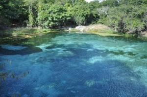 Bahia - Brazílie - příroda
