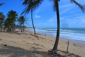 Bahia - Brazílie - pláž 2